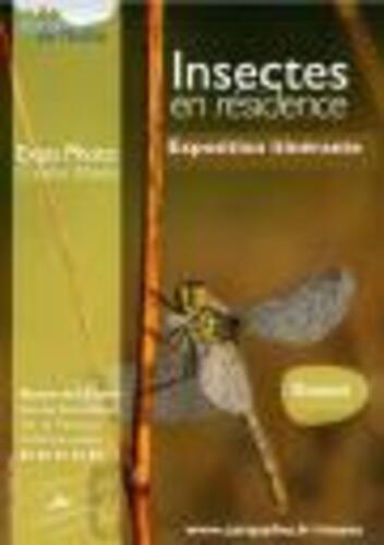"""Afficher """"Exposition itinérante Insectes en résidence"""""""